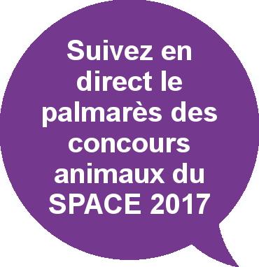 Palmarès concours animaux SPACE 2017