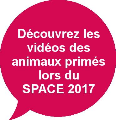 Vidéos animaux primés SPACE 2017