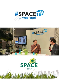 Web TV SPACE 2017
