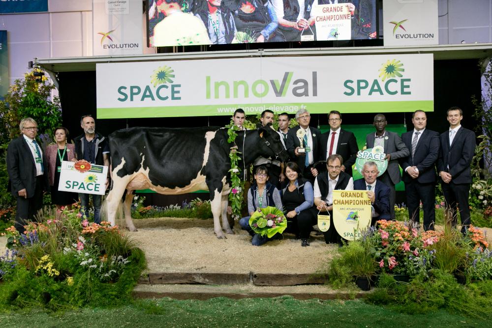 Concours Prim Holstein Atlantique