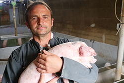 Mickaël Guilloux, éleveur de porcs