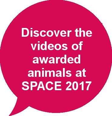 Videos of awarded animals SPACE 2017