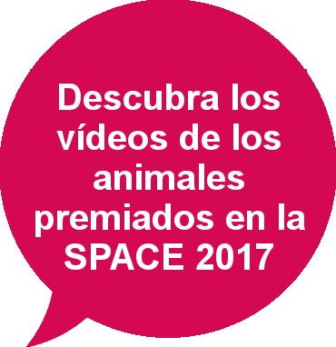 Vídeos de los animales premiados SPACE 2017